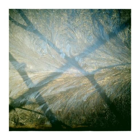 Sedimentary_Dendrites-01_Feb_2013-Full