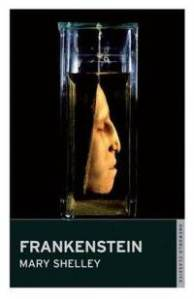 mary shelleys frankenstein and structuralism essay