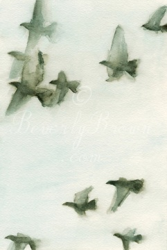 Flock of Pigeons - Watercolor Painting of Birds